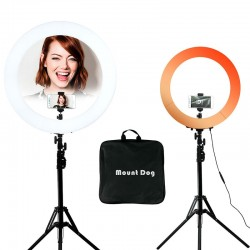 picture ring light LED phone light photo stand ring selfie light